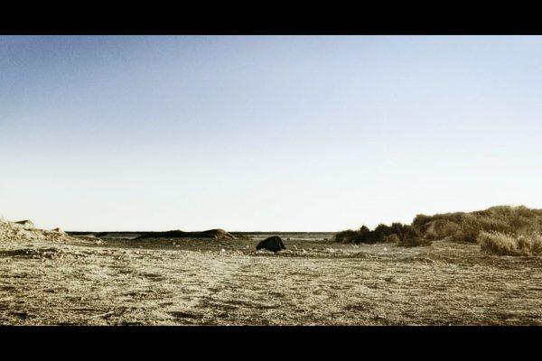 453-frame1_Rewind